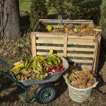 Benefits of Composting as a Form of Waste Disposal